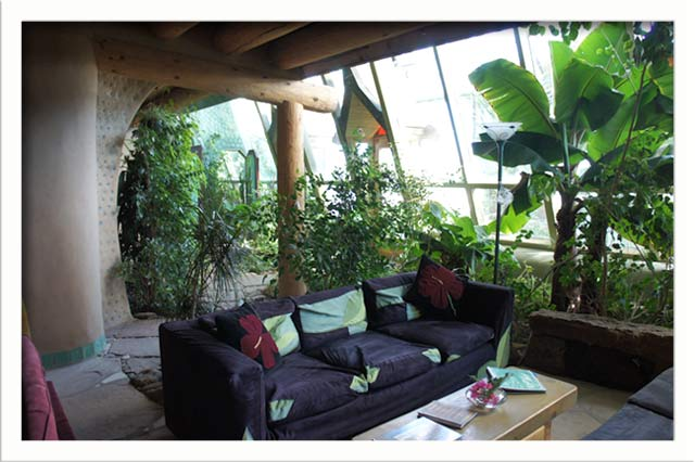 Living room by the greenhouse