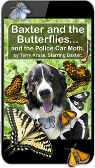 eBook: Baxter and the Butterflies