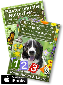 eBook: Baxter eBooks